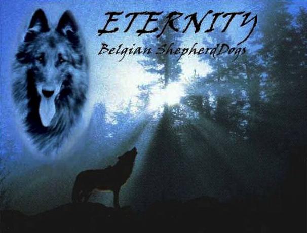 Kennel Eternity